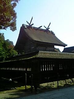 20051114