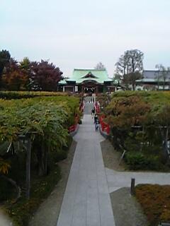 20051128