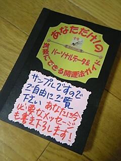 20081119