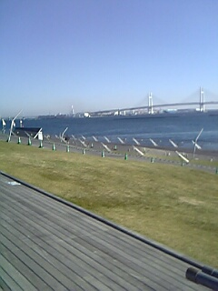 20071118