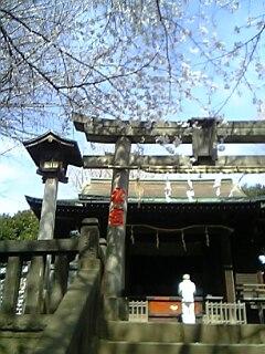 20080328