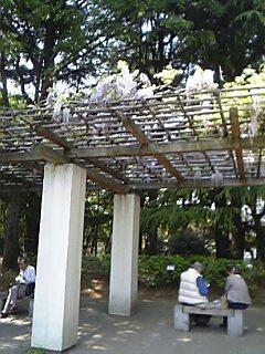 20080425