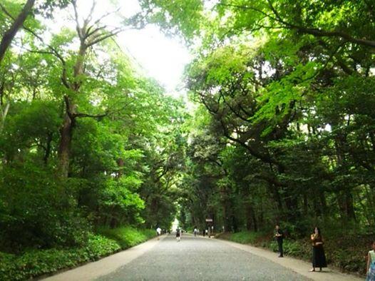 渋谷からの帰り明治神宮